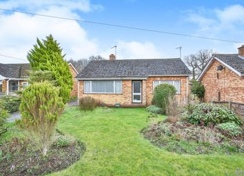 Thumbnail 2 bedroom bungalow to rent in Chantry Lane, Necton, Swaffham