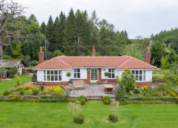 Thumbnail 4 bed detached bungalow for sale in Parkend Road, Bream, Lydney