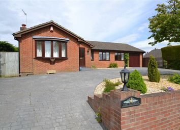 Thumbnail 4 bed detached bungalow for sale in Stoney Lane, Ashmore Green, Berkshire