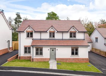 Thumbnail 4 bed detached house for sale in Parys Road, Ludlow, Shropshire