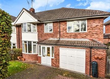 Thumbnail 4 bed semi-detached house to rent in Courtney Rise, Hereford