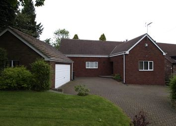 Thumbnail 4 bed detached bungalow to rent in Willow Bank, Barnsley