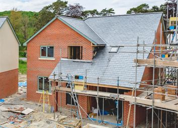 Thumbnail 3 bedroom detached house for sale in Y Maes, Beulah, Llanwrtyd Wells