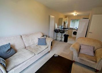 Thumbnail 2 bed flat to rent in Bowmont Walk, Chester Le Street, County Durham