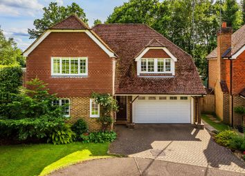 Thumbnail 4 bed detached house for sale in Spring Copse, Crawley