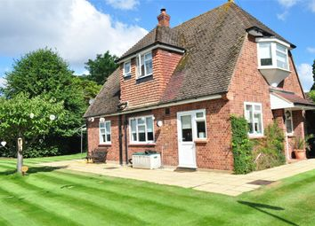 Thumbnail 2 bed detached house to rent in Penton Road, Staines, Surrey