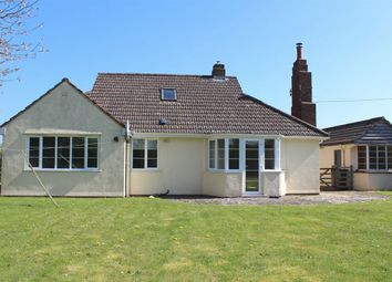 Thumbnail 3 bed detached bungalow to rent in Petherton Road, North Newton, Bridgwater
