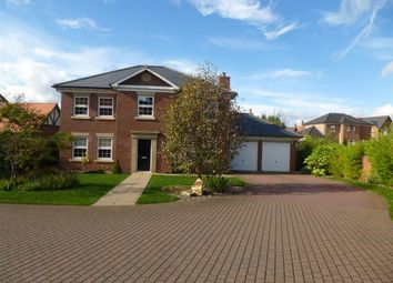 Thumbnail 4 bed detached house to rent in Maynard Grove, Wynyard, Billingham