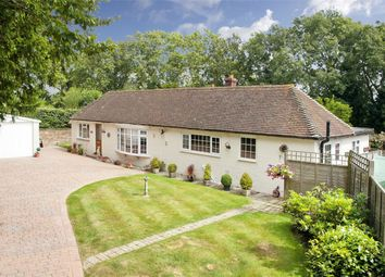 Thumbnail 4 bed detached bungalow for sale in Little Chittlebirch, Compasses Lane, Staplecross, East Sussex