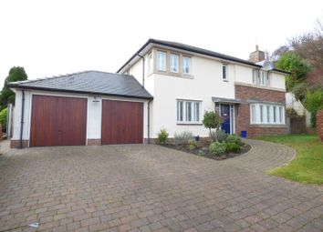 Thumbnail 4 bed detached house for sale in Thomas Hawksley Park, Sunderland