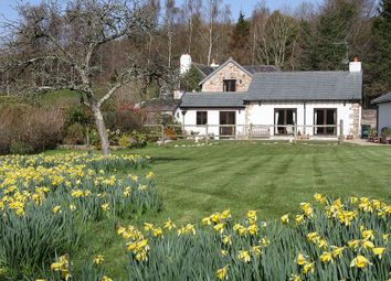 Thumbnail 4 bed barn conversion for sale in Daccombe, Newton Abbot, Devon