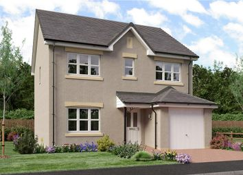 "Thumbnail 4 bed detached house for sale in ""Shaw"" at Ravenscroft Street, Edinburgh"
