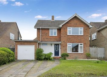 Thumbnail 3 bedroom detached house to rent in Hazel End, Swindon, Wiltshire