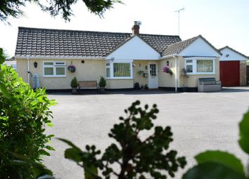 Thumbnail 3 bedroom bungalow for sale in Old Newtown Road, Newbury