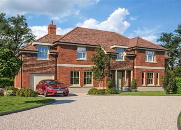 Thumbnail 4 bed detached house for sale in The Spinney, Bragbury Lane, Bragbury End, Herts