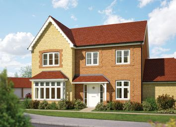 "Thumbnail 4 bed detached house for sale in ""The Maple"" at Gainsborough, Milborne Port, Sherborne"