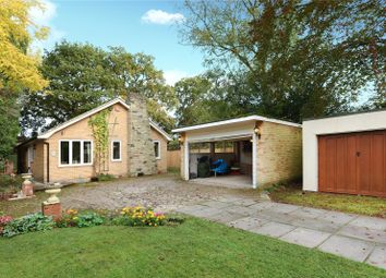 3 bed detached bungalow for sale in Frog Hall Drive, Wokingham, Berkshire RG40