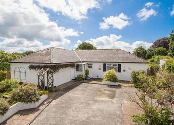 Thumbnail 3 bed detached bungalow for sale in Beaworthy