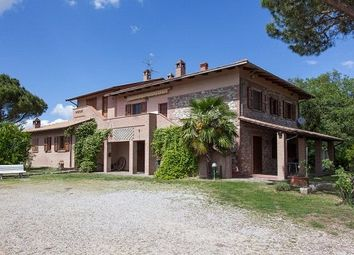 Thumbnail Hotel/guest house for sale in Winemaking Business & Holiday Farm, Castiglione Del Lago, Umbria