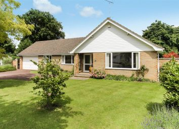 Thumbnail 4 bed detached bungalow for sale in The Avenue, Charlton Kings, Cheltenham