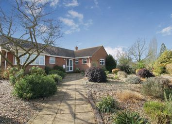 Thumbnail 3 bed bungalow for sale in Low Road, Thurlton, Norwich