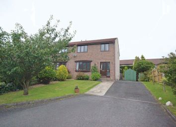 Thumbnail 3 bed semi-detached house for sale in Meadow View, Haltwhistle