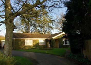 Thumbnail 4 bedroom detached bungalow for sale in Sywell Road, Overstone, Northampton
