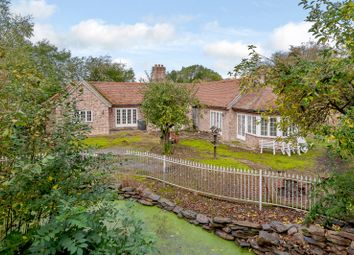 Thumbnail 2 bed detached bungalow for sale in New England Road, Birdbrook, Halstead