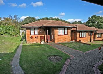 Thumbnail 2 bed bungalow for sale in The Ferns, Bricksbury Hill, Farnham, Surrey