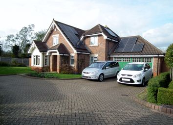 Thumbnail 4 bedroom detached house for sale in Speyhawk Place, Little Heath, Potters Bar