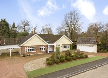 Thumbnail 6 bed detached house for sale in Thorndon Approach, Herongate, Brentwood, Essex