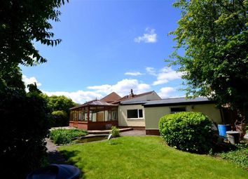 Thumbnail 3 bed bungalow for sale in Mill Walk, Cottingham, East Riding Of Yorkshire