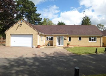 Thumbnail 5 bed property to rent in Lone Tree Grove, Impington, Cambridge