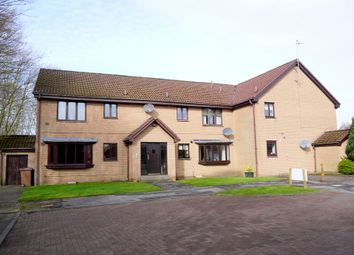 Thumbnail 2 bed flat for sale in Mccolgan Place, Ayr