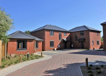 Thumbnail 4 bed detached house for sale in Long Lane, Holbury, Southampton
