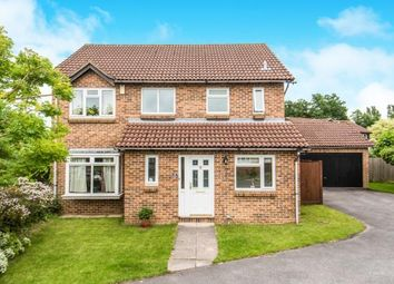 Thumbnail 4 bed detached house for sale in Burpham, Guildford, Surrey