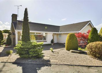 Thumbnail 3 bed detached bungalow for sale in The Hazels, Wilpshire, Blackburn