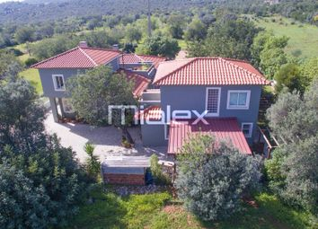 Thumbnail 3 bed villa for sale in 9700 S. Sebastiao, Portugal