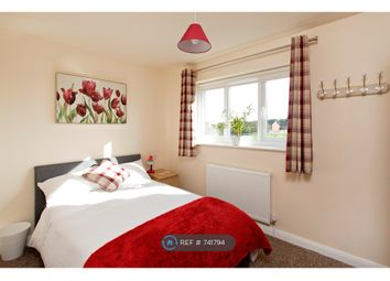 Thumbnail Room to rent in Patterdale Drive, Peterborough