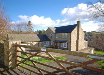 Thumbnail 3 bed detached house for sale in The Dene, Allendale, Hexham