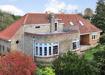 Thumbnail 5 bed detached house for sale in Beccles Road, Fritton, Great Yarmouth