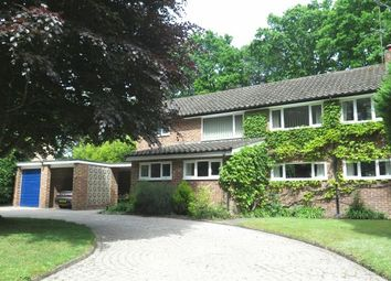 Thumbnail 4 bed detached house for sale in Rare Opportunity. Oaklands Close, Ascot, Berkshire