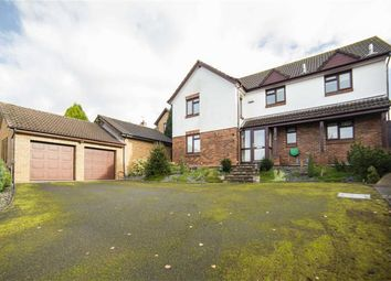 Thumbnail 4 bed detached house for sale in Orchid Meadow, Pwllmeyric, Chepstow
