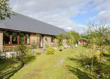 Thumbnail 3 bed detached bungalow for sale in Anaheilt, Acharacle, Highland