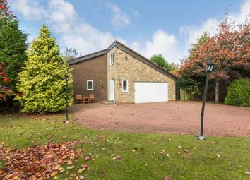 Thumbnail 6 bed detached house for sale in Ladyrigg, Darras Hall, Ponteland, Northumberland