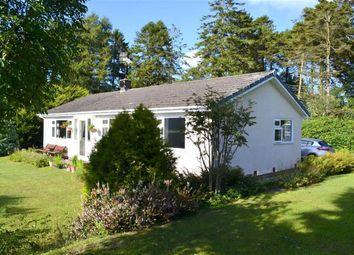 Thumbnail 3 bed detached bungalow for sale in Mydroilyn, Lampeter
