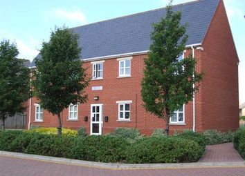 Thumbnail Studio to rent in Wilkes Court, Hartree Way, Ipswich