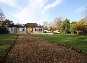 Thumbnail Bungalow to rent in Iffley Turn, Oxford