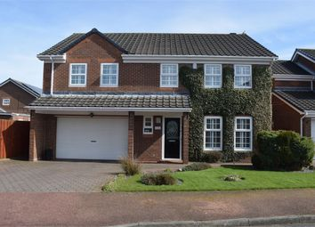 Thumbnail 5 bedroom detached house for sale in Abbey Drive, Newcastle Upon Tyne, Tyne And Wear
