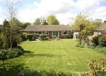 Thumbnail 4 bed detached bungalow for sale in Mid Street, South Nutfield, Redhill
